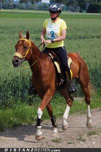 Endurance Academy (Melanie Arnold): Die Sportreiter. Hier auf der CERA Challenge in Dillingen, Foto: Christian Lüke