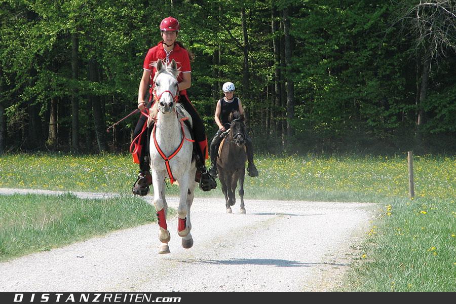 """Silke Behling: Es macht mir Spaß, mit meinem Pferd lange Strecken zu reiten und neue Landschaften kennen zu lernen. Distanzreiten bedeutet für mich """"Eins sein mit dem Pferd, kilometerlang""""."""